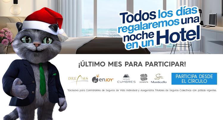Gato_rotativo_HOME8